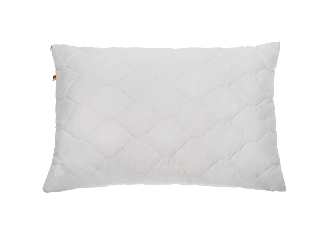 RINKINYS 2 pagalvės daigstytos šilku 50×70